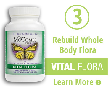 Intestinal Flora Candida Diet Clean Plan